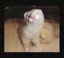 Ferret Smiling in Rice One Piece - Short Sleeve