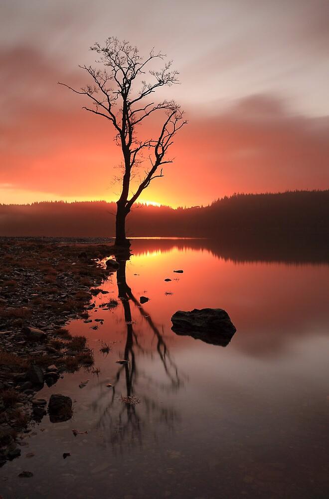 Loch Ard Sunrise  by Grant Glendinning