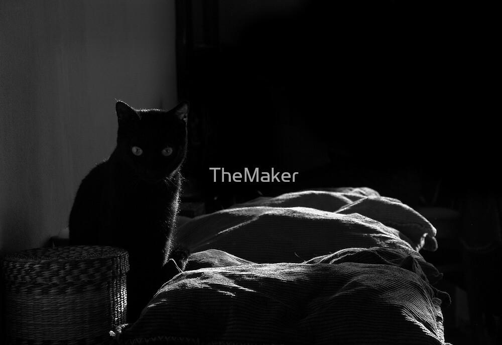 DarKat by TheMaker