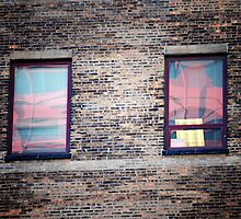 Windows by lumiwa