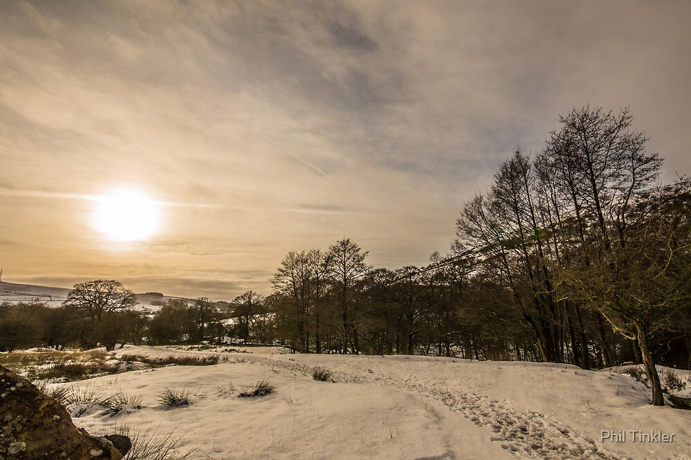 Winter Trail by Phil Tinkler