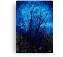 Tree and Blue Sky, Evening Canvas Print