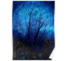 Tree and Blue Sky, Evening Poster