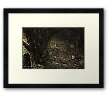 The Dark Fairytale Footpath  Framed Print