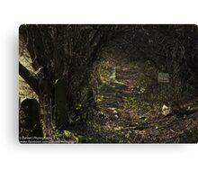 The Dark Fairytale Footpath  Canvas Print