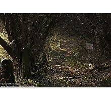 The Dark Fairytale Footpath  Photographic Print