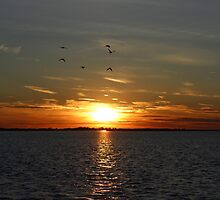 Amazing Long Island Sunset by RaymondJames