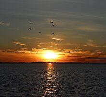 Amazing Long Island Sunset by RaymondJames