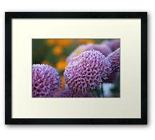 Flower and Flower Framed Print