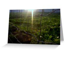 Framed Sun in Green Greeting Card