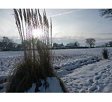 snow in Norfolk Photographic Print