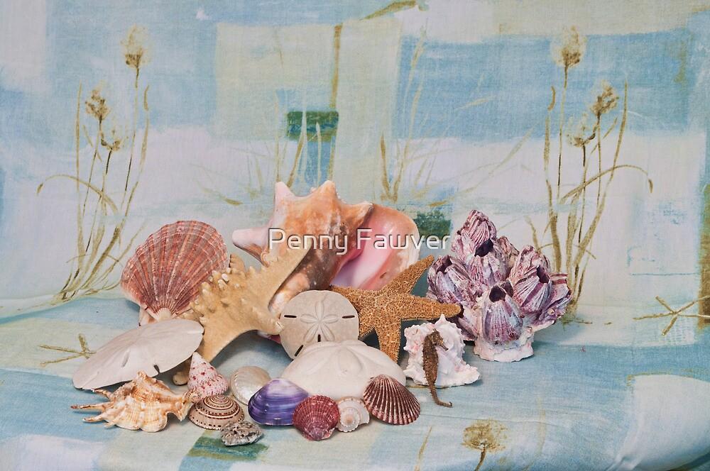 shells still life by Penny Rinker