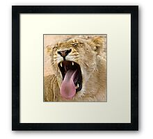 The Perfect Yawn Framed Print