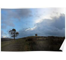 Cage at Lyme Park Poster