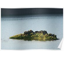 Coulee Lake Little Island of Flowers Poster