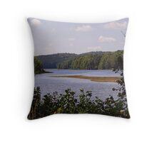 The Reservoir Throw Pillow