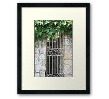 Ornate gate and foliage Framed Print