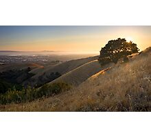 California East Bay Hills in Summer Photographic Print