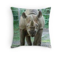 C'mon, I bet I will win this round! Throw Pillow