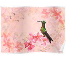 Primavera Rosa Poster