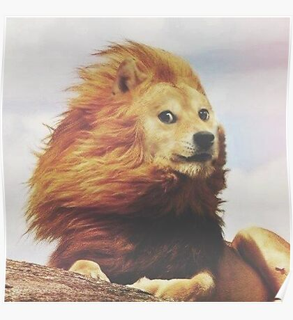 Doge - King of the Pride Poster