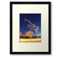 the tree and the star. Framed Print