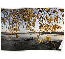 Autumn on the Deben River Poster