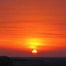 bushfire sunrise, jan 2013. eastcoast tasmania  by tim buckley | bodhiimages