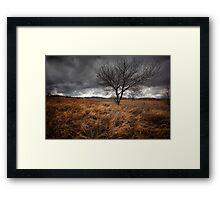 Winters Brew Framed Print