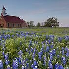 Texas Bluebonnets in front of a Church by RobGreebonPhoto
