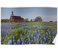 Texas Bluebonnets in front of a Church Poster