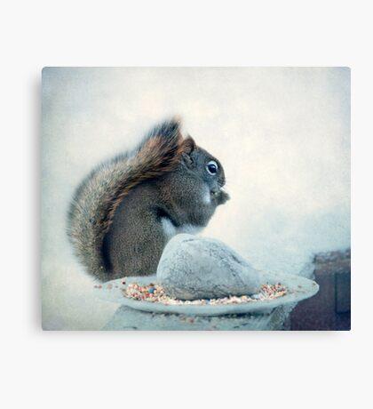 Little Squirrel's Breakfast ~ Canvas Print