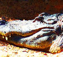 Camo Gator - Buy Alligator Art Prints by Sharon Cummings