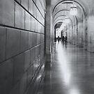 NYPL by ThePhotoweaver