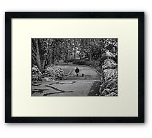 Eyes in the Park Framed Print
