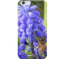 Tranquil Garden iPhone Case/Skin