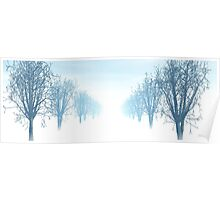 Winter avenue of trees Poster
