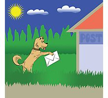 dog and letter Photographic Print
