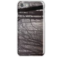 Misty Trees  iPhone Case/Skin