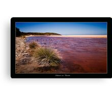 Saltwater nsw Australia 01 Canvas Print