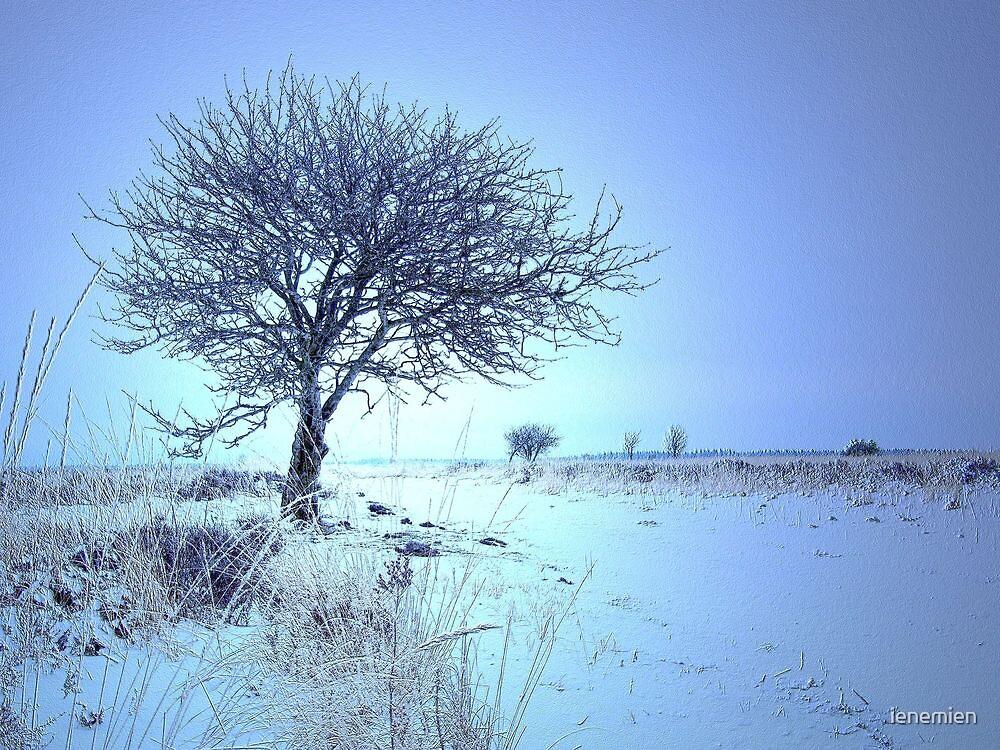 My favorite Tree by ienemien