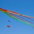 The Kite by Alan Gillam