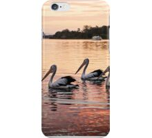 Pelicans On Hastings River iPhone Case/Skin