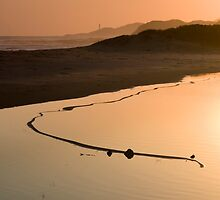 View of the Great Serpent, Looking Towards Point Hicks.  by Alex Fricke