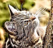 Wild nature - pussy #3 by Wiedzminka
