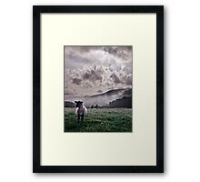 Sheep in the Mist Framed Print