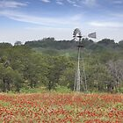 Windmill in a Field of Wildflowers by RobGreebonPhoto