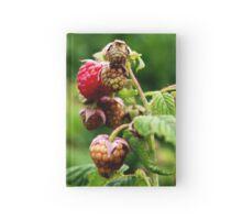 Raspberries Hardcover Journal