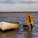 Mussel harvesting by almaalice
