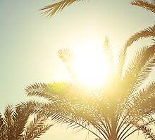 sun catcher by faithie